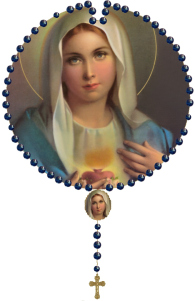"""One day, through the Rosary and the Scapular, I will save the world"" - Our Lady to St. Dominic"