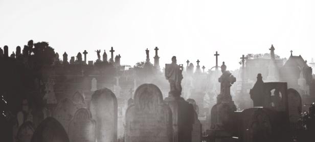Waverley Cemetery at dusk