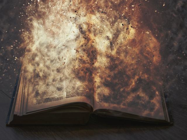 bookburn-1