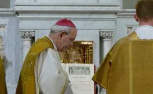 bishop_schneider_mass2_810_500_55_s_c1